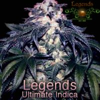 LUI Legends Ultimate Indica