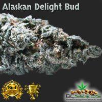 Alaskan Delight Bud