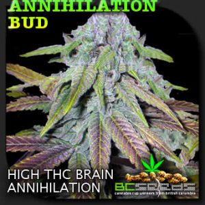 Annihilation Cannabis Seeds