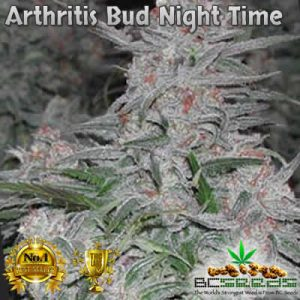 Arthritis Bud Night Time