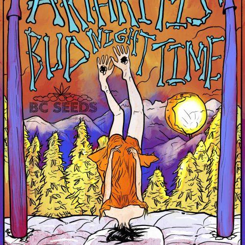 Arthritis Bud Night Time Cannabis