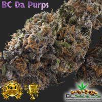 BC Da Purps Bud