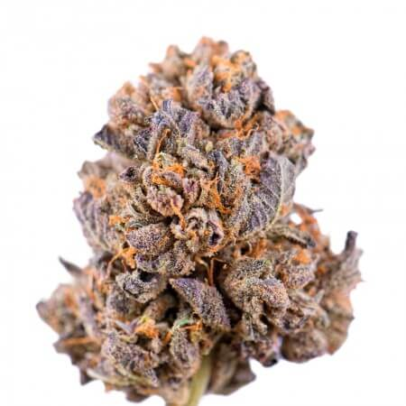 Caramelicious Feminised Seeds