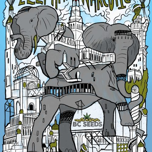 Elephant Narcotica Strain