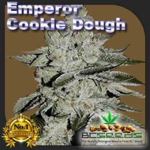 Emperor Cookie Dough