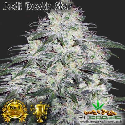 Jedi Death Star
