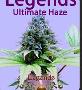 Legends Ultimate Haze