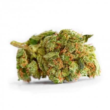 Medijuana Feminised Bud