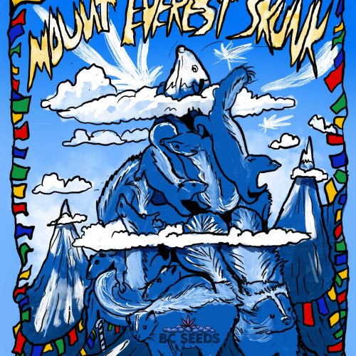 Mount Everest Skunk Strain