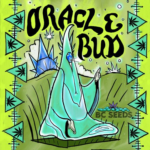 Oracle Bud Strain