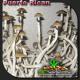 Puerto Rican Shrooms