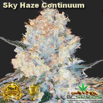 Sky Haze Continuum