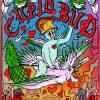 Cupid Bud BC Seeds