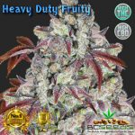 Heavy Duty Fruity