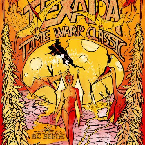 Texada Timewarp Classic Cannabis Strain