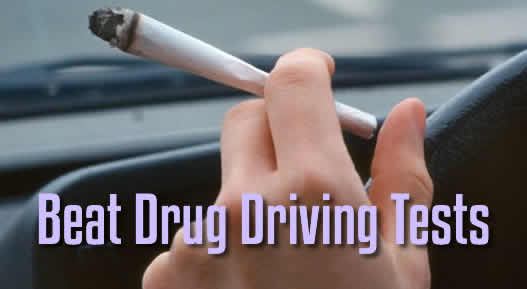 How to Beat Drug Driver Tests in Australia Eating Processed