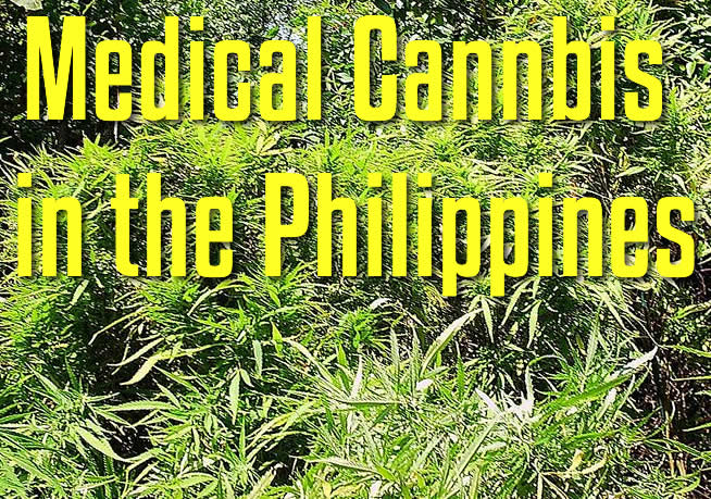 Medical Cannabis Legalization Philippines