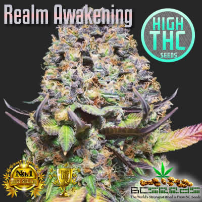 Realm Awakening Bud
