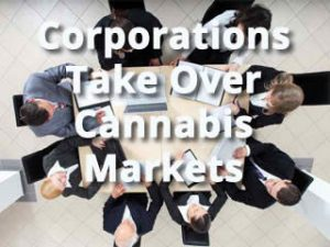 Corporations Take Over Cannabis Markets