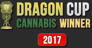 Dragon Cup Winner 2017