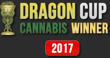 Dragon Cup Winner 2017