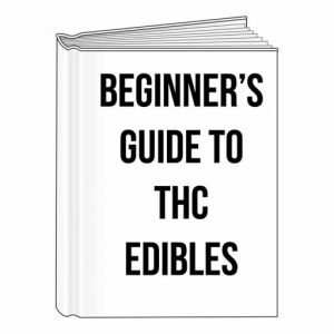 Beginner's Guide To THC Edibles