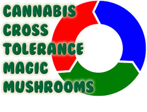 Cannabis Cross Tolerance Magic Mushrooms
