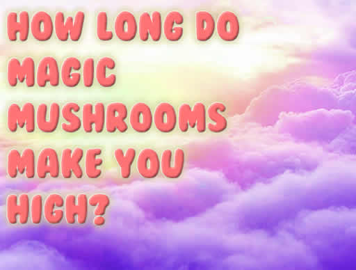 How Long Do Magic Mushrooms Make You High