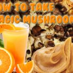 How To Take Magic Mushrooms