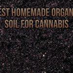Best Homemade Organic Soil For Cannabis