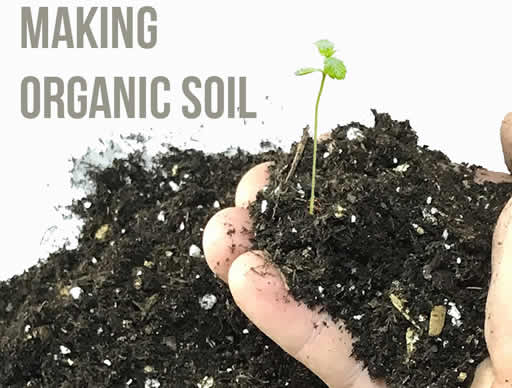 Making your own organic soil tips tricks from bc seeds for Organic top soil