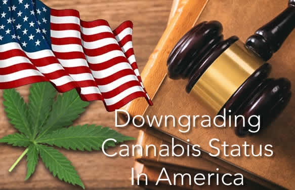 Downgrading Cannabis Status In America