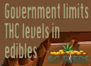 Government limits THC levels in edibles