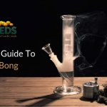 A Complete Guide To Smoke Bong