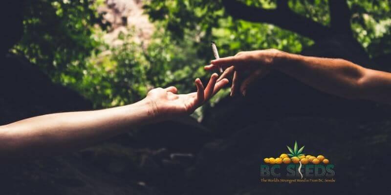 7 Ways Marijuana Can Emphasize Relationships