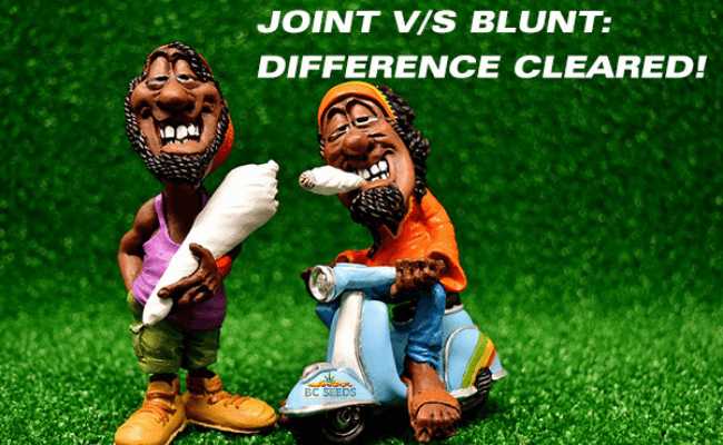 Joint vs Blunt Difference Cleared