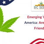 Emerging Vibes In America Are you 420 friendly