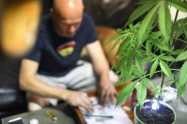 Marijuana for seniors/ Elderly