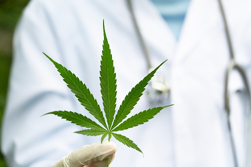 Multiple Sclerosis With Medical Cannabis