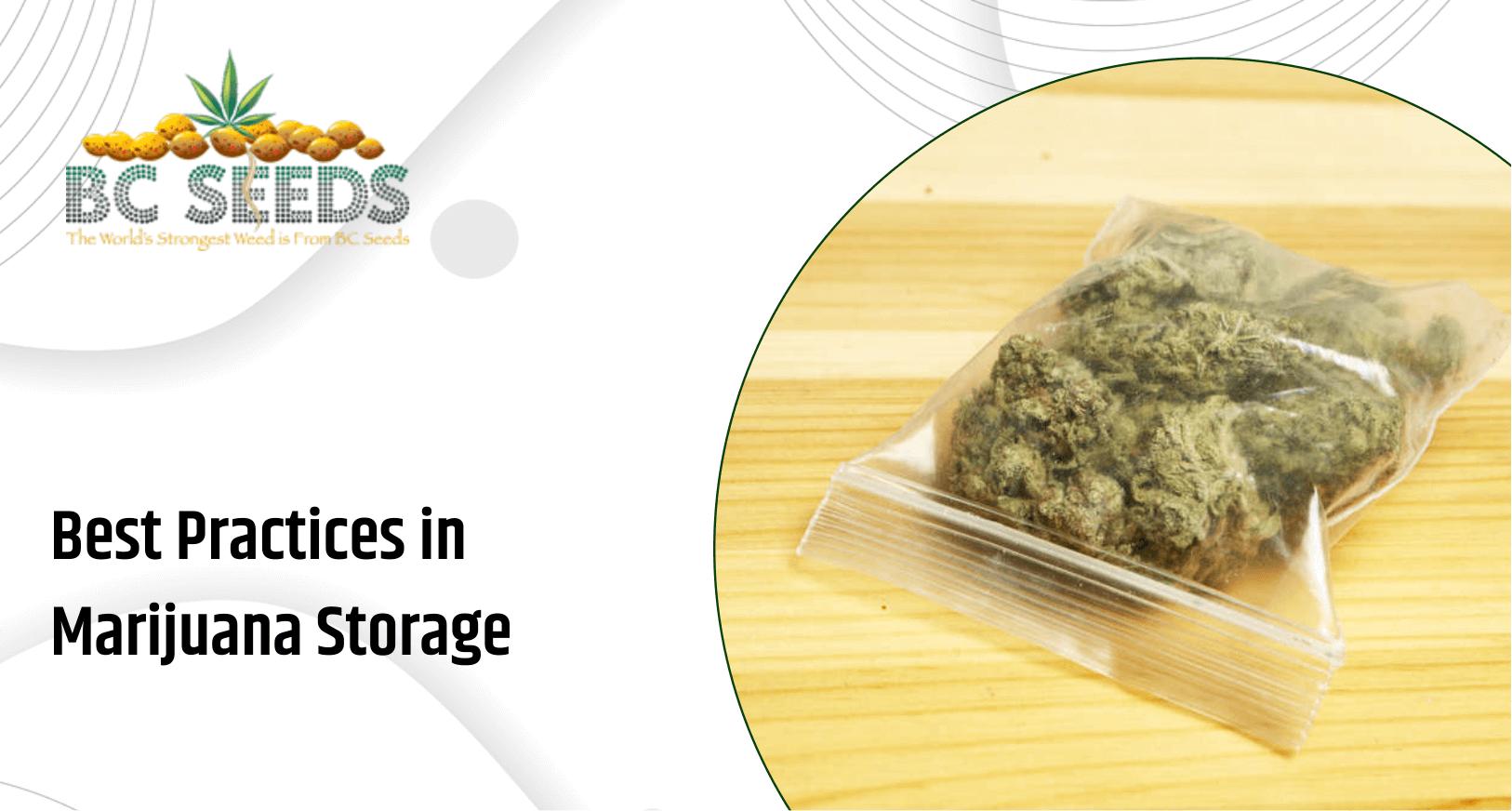 Tips to Store Marijuana